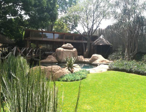 rocher piscine verdure arbre pont