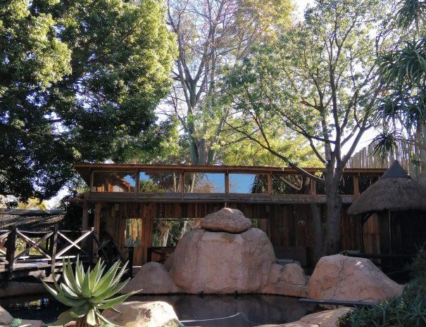 rocher piscine verdure arbre